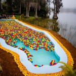 legoland-florida-pool-cypress-gardens